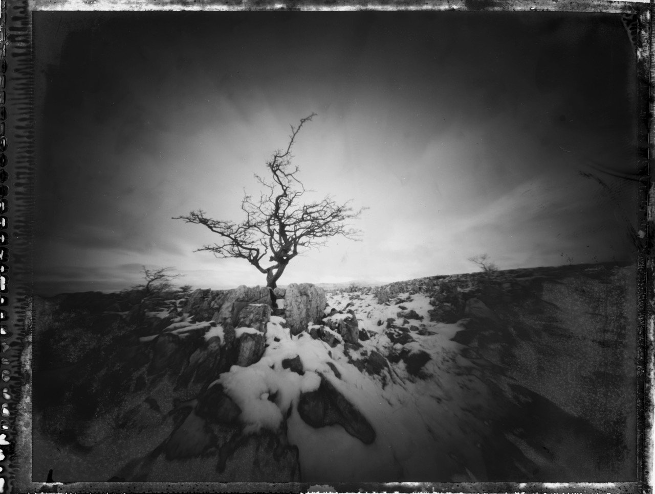 Southerscales Scars, Zero Image 4×5, Polaroid 55, ©Mark Rowell 2015