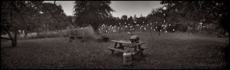 Fireflies ©Paul Barden